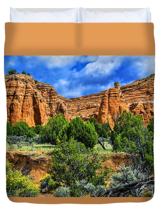 Mountain Duvet Cover featuring the photograph Striated Mountains by Roberta Bragan