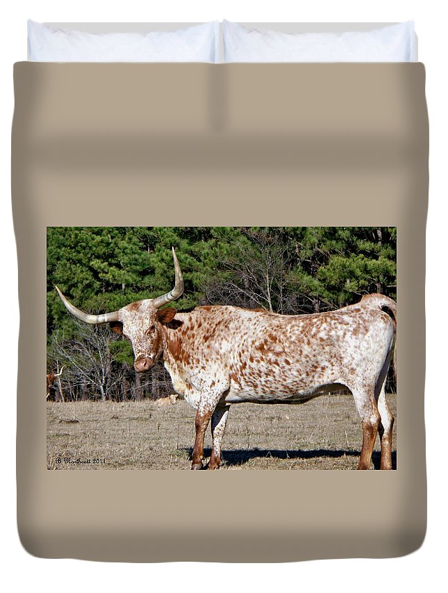 Animal Duvet Cover featuring the photograph Strike A Pose - Longhorn Style by Betty Northcutt