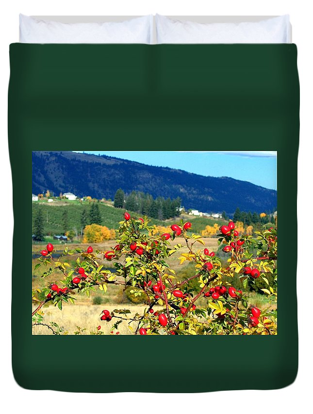 Autumn Duvet Cover featuring the photograph Striking Autumn Red by Will Borden