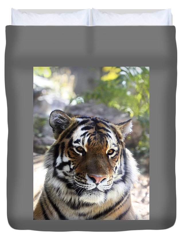 Animal Duvet Cover featuring the photograph Striped Beauty by Marilyn Hunt