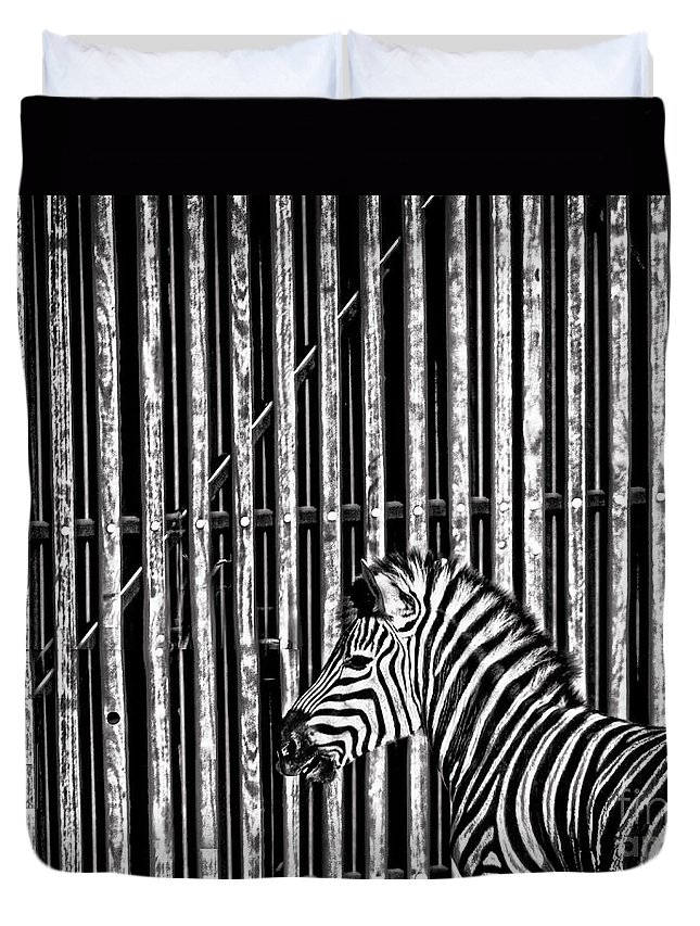 Zebra Duvet Cover featuring the photograph Stripes by Sheila Smart Fine Art Photography