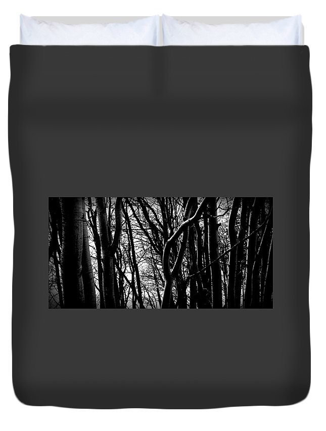 Woods Duvet Cover featuring the photograph Stroll by Harvey Raab