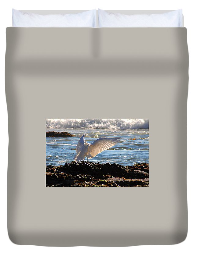 Clay Duvet Cover featuring the photograph Strut by Clayton Bruster