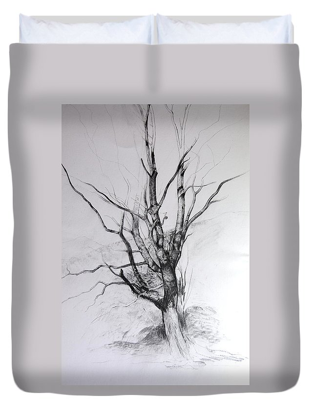 Landscape Duvet Cover featuring the drawing Study Of A Tree by Harry Robertson