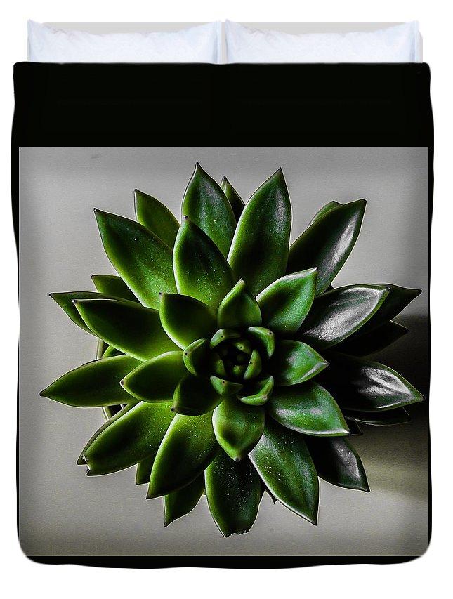 Succulent Duvet Cover featuring the photograph Succulent by Fae Scalmazzi