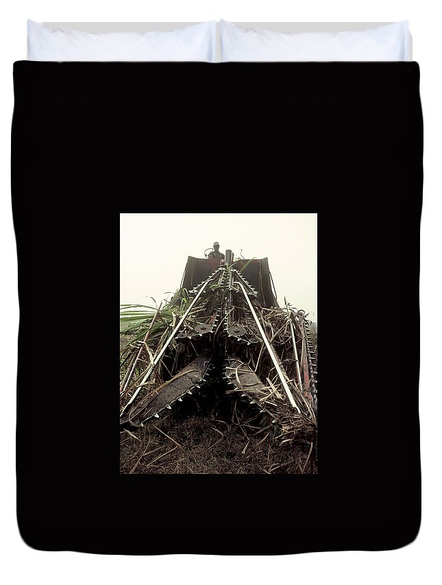 Sugar Cane Duvet Cover featuring the photograph Sugar Cane Cutter by Herman Robert