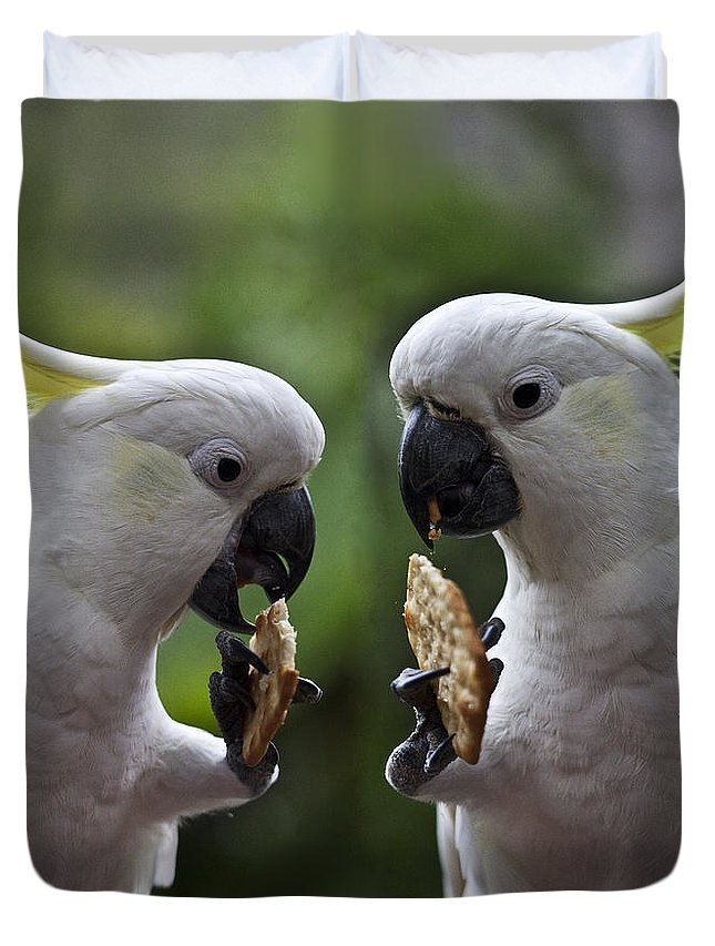Sulphur Crested Cockatoo Duvet Cover featuring the photograph Sulphur Crested Cockatoo Pair by Sheila Smart Fine Art Photography