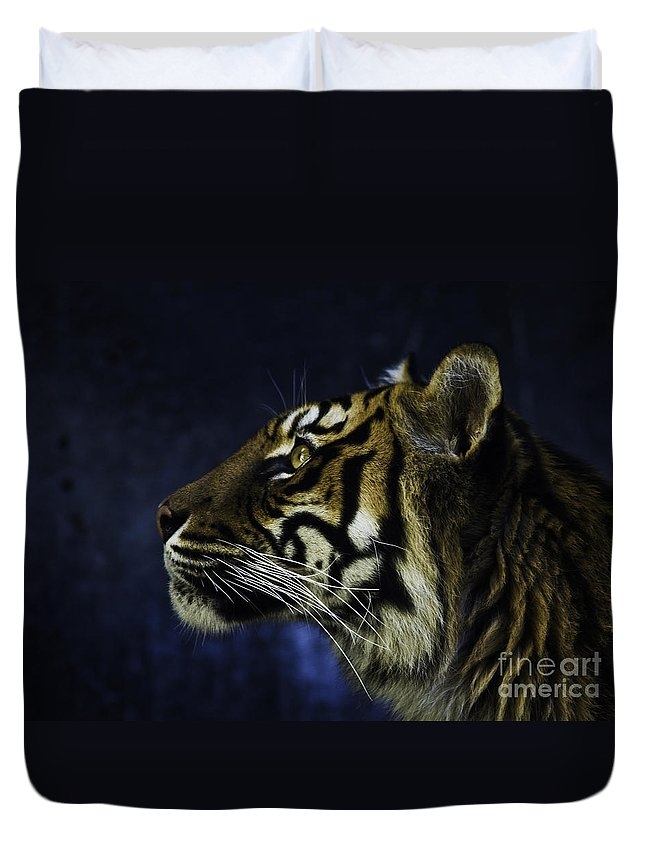 Sumatran Tiger Duvet Cover featuring the photograph Sumatran Tiger Profile by Sheila Smart Fine Art Photography
