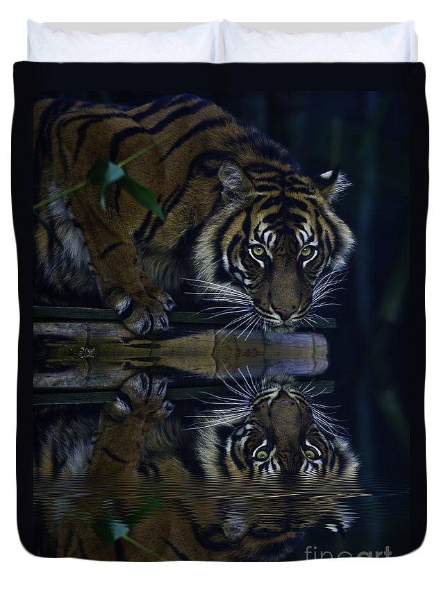 Sumatran Tiger Duvet Cover featuring the photograph Sumatran Tiger Reflection by Sheila Smart Fine Art Photography