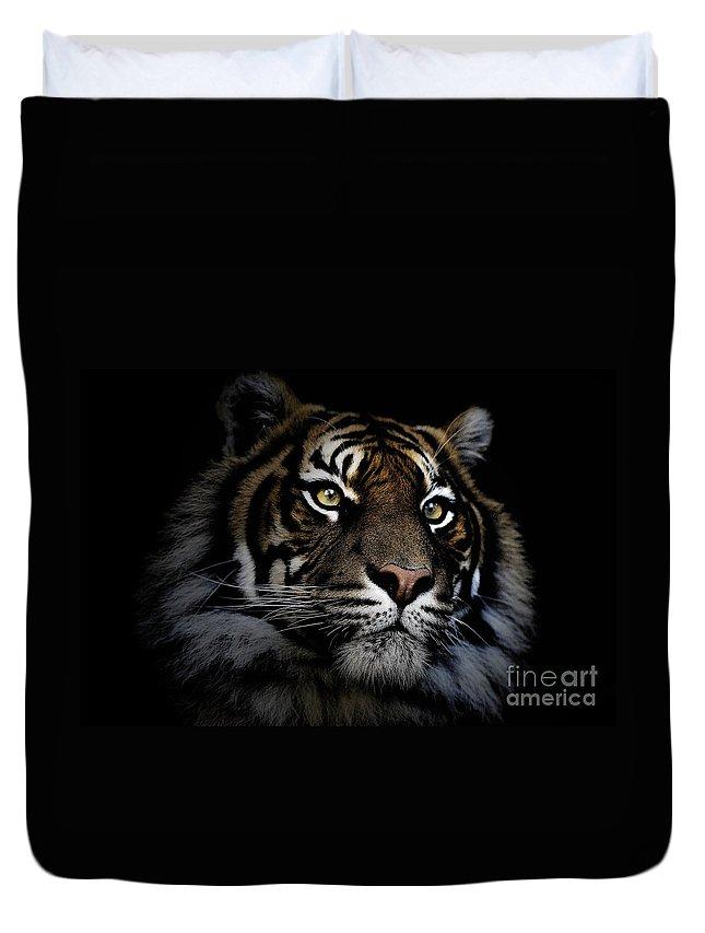 Sumatran Tiger Wildlife Endangered Duvet Cover featuring the photograph Sumatran Tiger by Sheila Smart Fine Art Photography