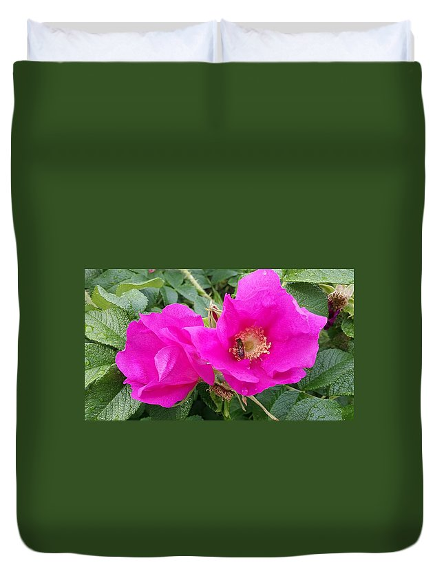 Rose Duvet Cover featuring the photograph Summa' by Denise Adams
