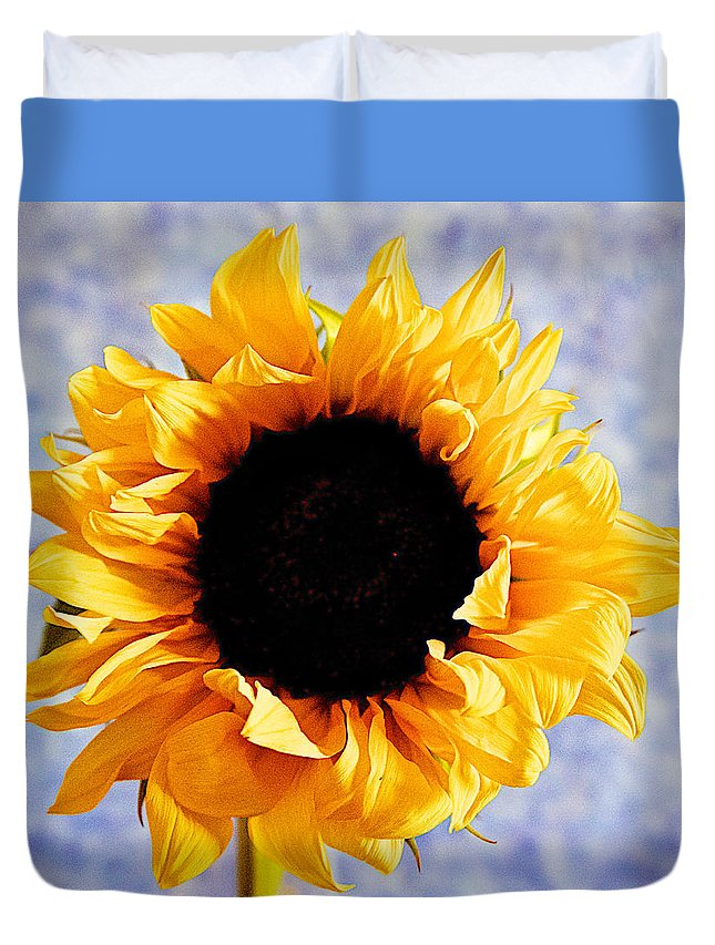 Sunflower Duvet Cover featuring the photograph Summer Beauty by Barbara Zahno