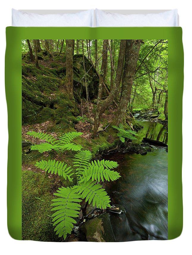 Summer Duvet Cover featuring the photograph Summer Brook by Irwin Barrett