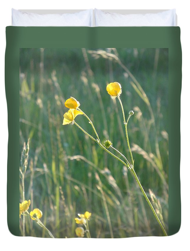 Flowers Duvet Cover featuring the photograph Summer Buttercups by Susan Baker