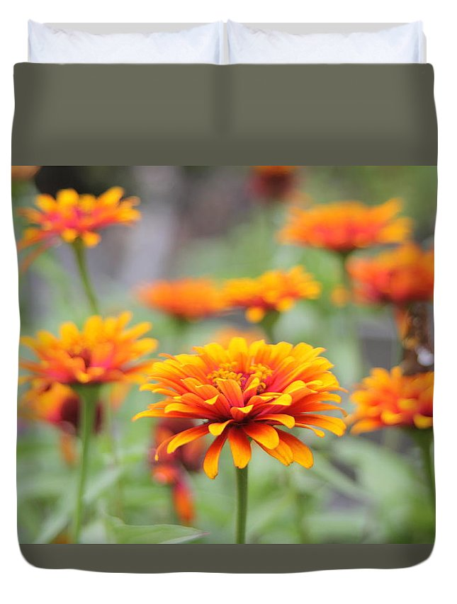 Lilly Duvet Cover featuring the photograph Summer Flower by Sam Teitelbaum