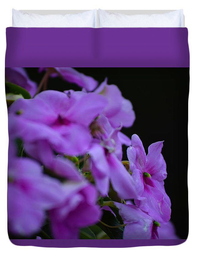 Pink Flowers Duvet Cover featuring the photograph Summer Flowers by Matthew DiGiovanna