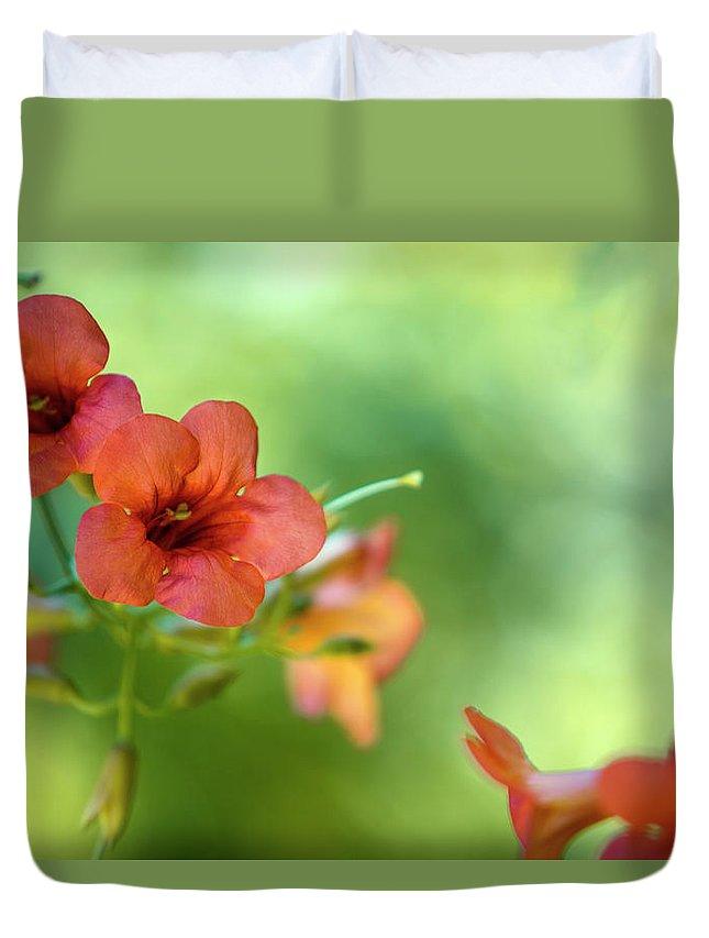 Botanic Gardens Duvet Covers
