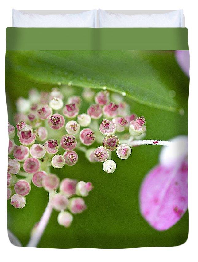 Hydrangea Duvet Cover featuring the photograph Summer Hydrangea 3 by Robert Skuja