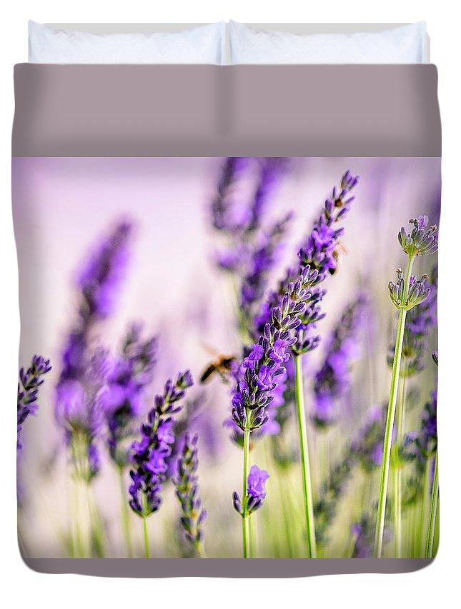 Lavender Duvet Cover featuring the photograph Summer Lavender by Nailia Schwarz