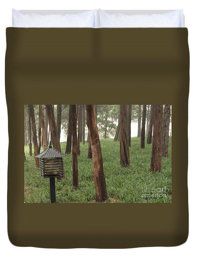 Summer Palace Duvet Cover featuring the photograph Summer Palace Trees And Lamp by Carol Groenen