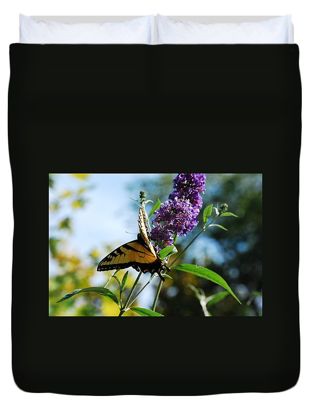 Swallowtail Duvet Cover featuring the photograph Summer Swallowtail by Lori Tambakis