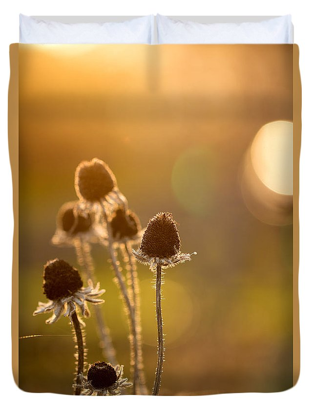 Flower Duvet Cover featuring the photograph Summer's End by Andrea Kappler
