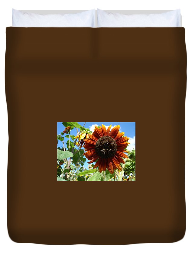 Sunflower Duvet Cover featuring the photograph Summers Here by Susan Baker