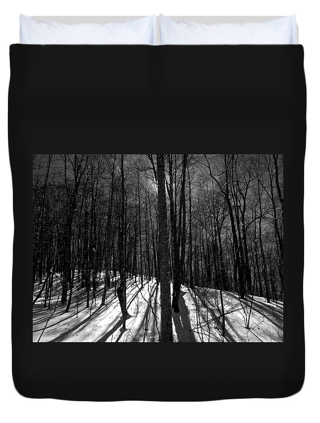 Forest Duvet Cover featuring the photograph Sun Attempt To Warm by Dale Chapel