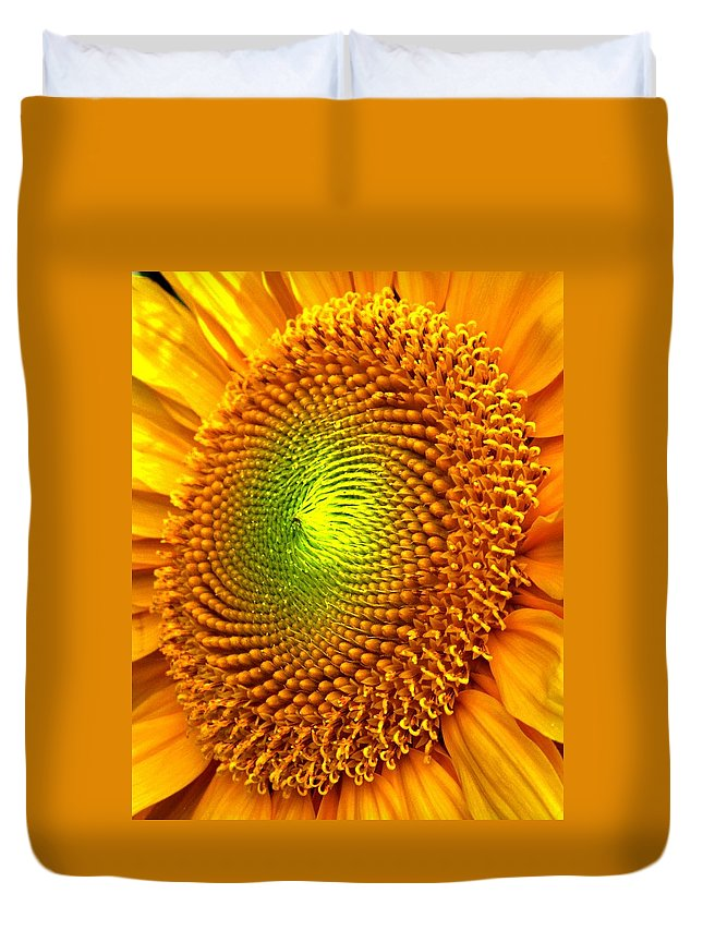 Sun Duvet Cover featuring the photograph Sun Burst by Ian MacDonald