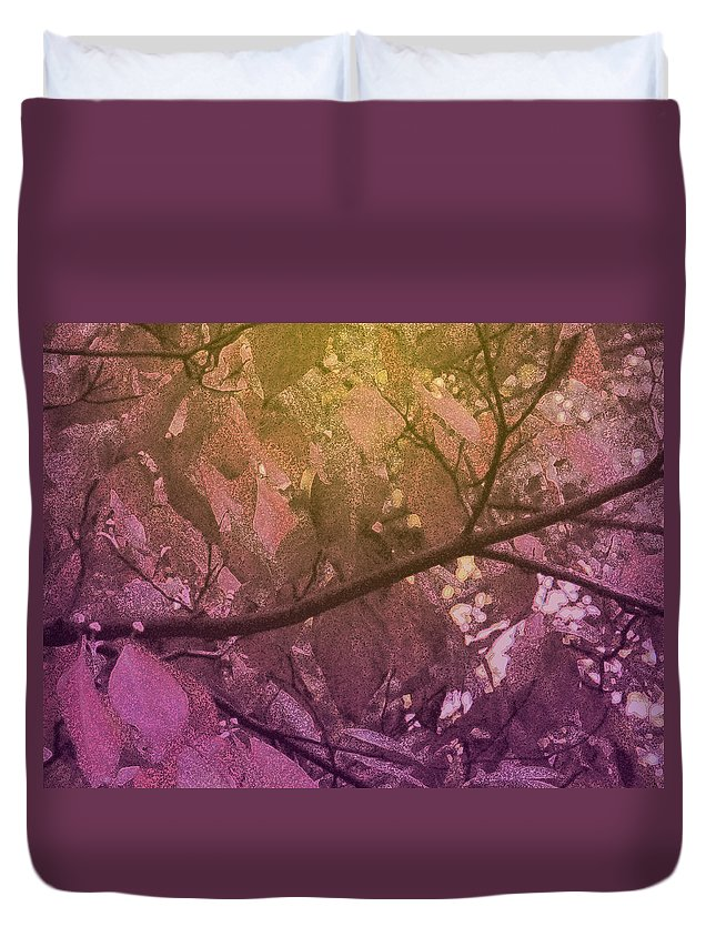 Tree Duvet Cover featuring the photograph Sun Filter by Ian MacDonald