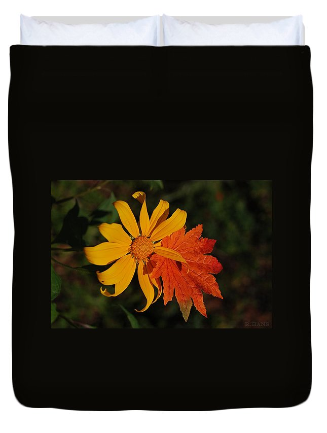 Pop Art Duvet Cover featuring the photograph Sun Flower And Leaf by Rob Hans