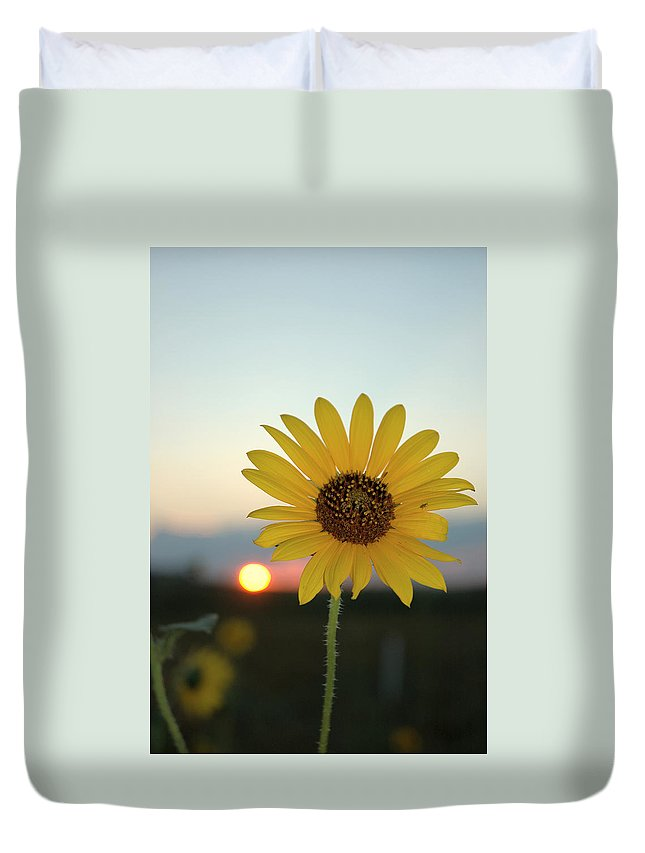 Sunset Duvet Cover featuring the photograph Sun Flower At Sunset by Jerry McElroy