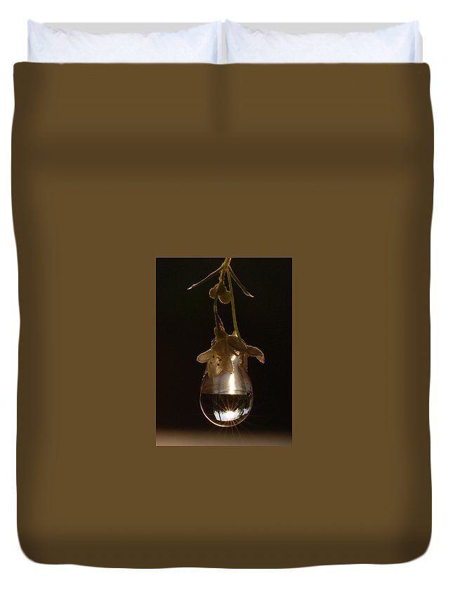 Microcosm Duvet Cover featuring the photograph Sun In A Drop by Yuri Hope