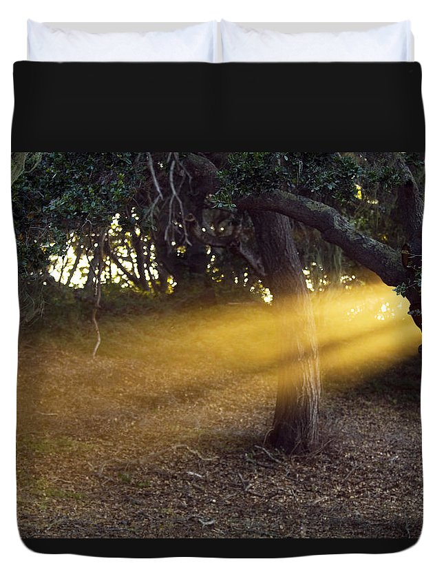 Landscape Duvet Cover featuring the photograph Sun Rays 2 by Jill Reger