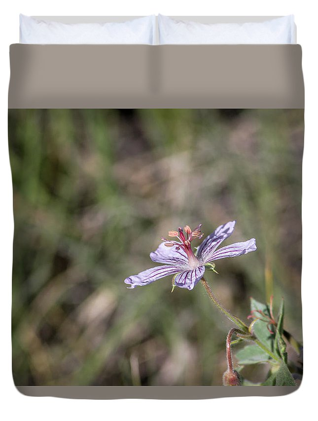 Botanical Duvet Cover featuring the photograph Sun Seeking by Alana Thrower