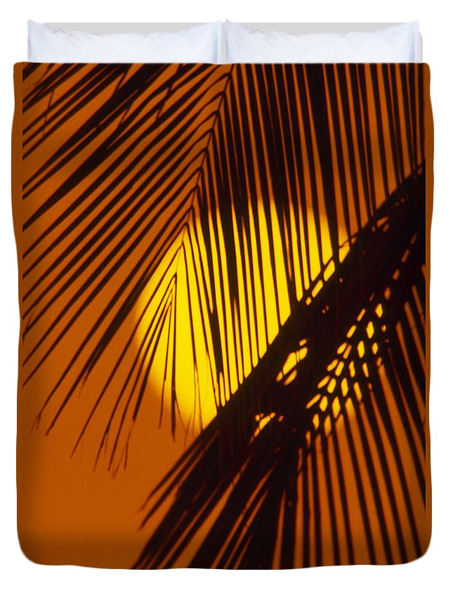 Bright Duvet Cover featuring the photograph Sun Shining Through Palms by Ron Dahlquist - Printscapes