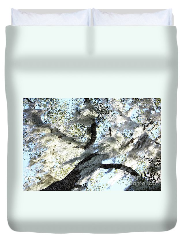Oak Tree Duvet Cover featuring the photograph Sun Worshipper by Carol Groenen