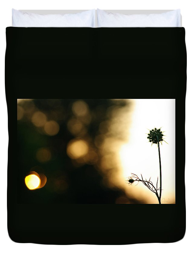 Jenny Gandert Duvet Cover featuring the photograph Sun Worshipper by Jenny Gandert