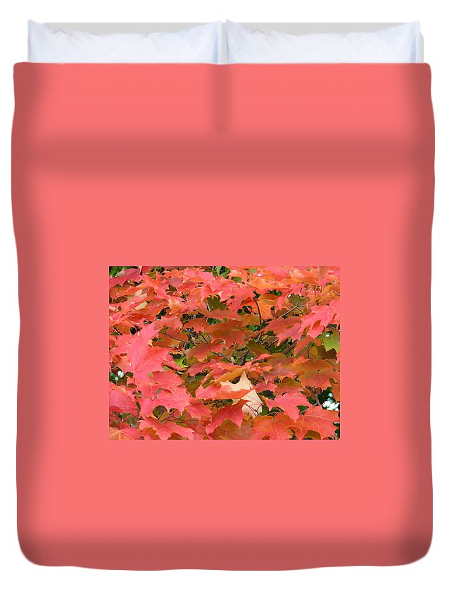 Leaves Duvet Cover featuring the photograph Sunburst by Kelly Mezzapelle