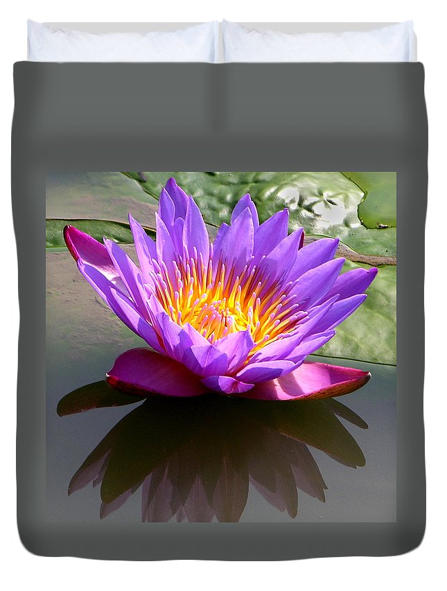 Water Lily Duvet Cover featuring the photograph Sunburst Lily by John Lautermilch