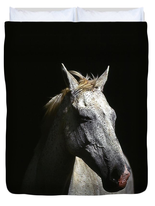 Horse Duvet Cover featuring the photograph Sundance by Jim Cazel