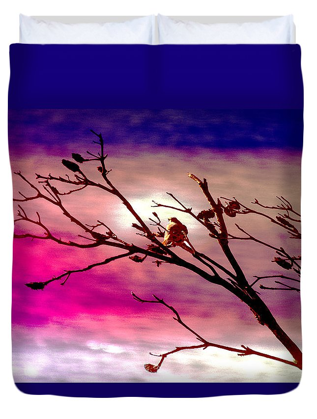 Landscape Duvet Cover featuring the photograph Sundown by Holly Kempe