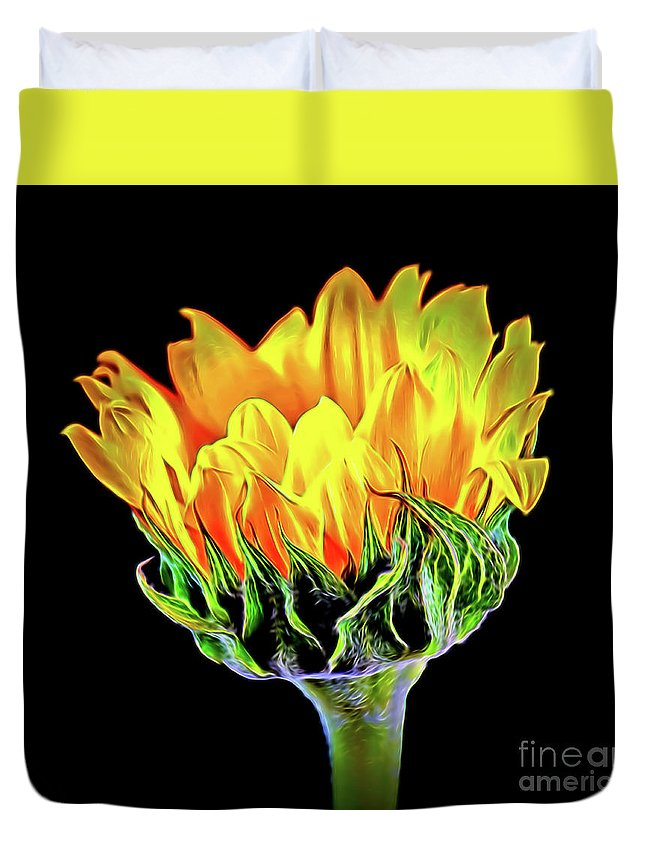 Sunflower 18-15 Duvet Cover featuring the photograph Sunflower 18-15 by Ray Shrewsberry