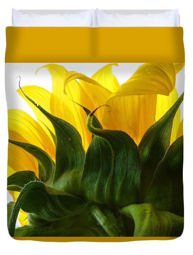 Flower Duvet Cover featuring the photograph Sunflower 2015 2 by Tina M Wenger