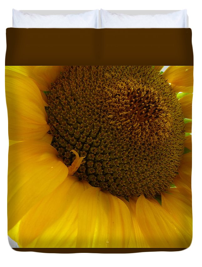 Flower Duvet Cover featuring the photograph Sunflower 2015 5 by Tina M Wenger