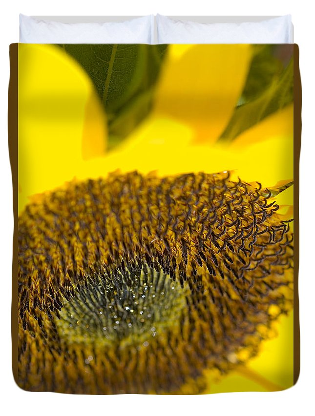 Abstract Duvet Cover featuring the photograph Sunflower Close-up by Ray Laskowitz - Printscapes