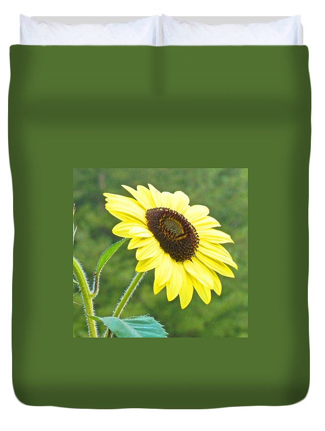 Sunflower Duvet Cover featuring the photograph Sunflower by Cynthia McCullough