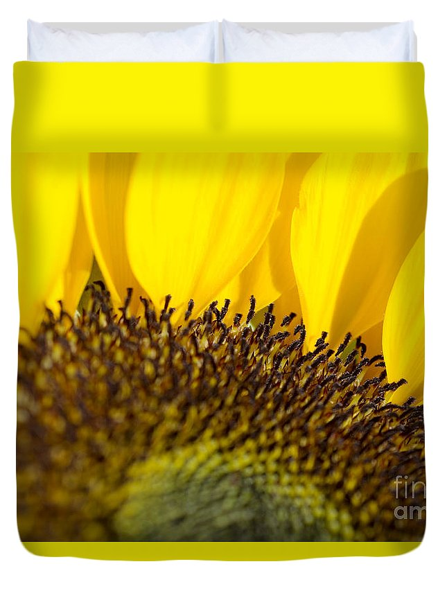 83-pfs0168 Duvet Cover featuring the photograph Sunflower Detail by Ray Laskowitz - Printscapes