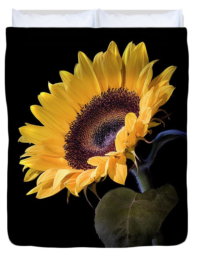 Flower Duvet Cover featuring the photograph Sunflower by Endre Balogh