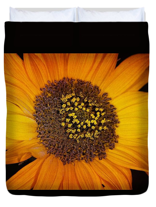 Sunflower Duvet Cover featuring the photograph Sunflower Glory by Janice Bennett